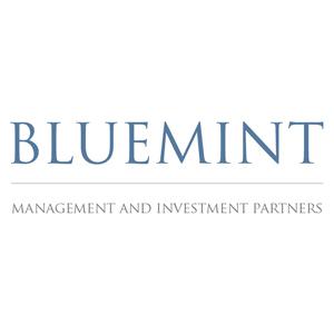 Bluemint Investment Advisors