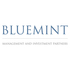 Bluemint Investment Advisors