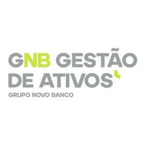 GNB Gestão de Ativos, Grupo Novo Banco