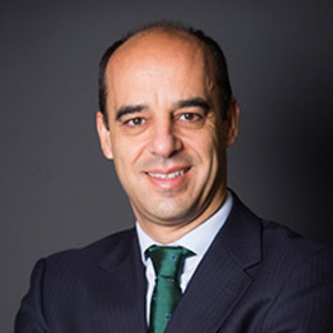 Guillermo Viñuales