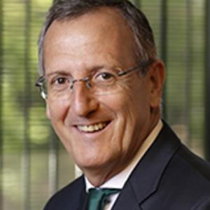 Rafael Mínguez