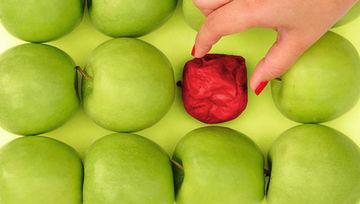 Cualidades y habilidades preferidas en un gestor