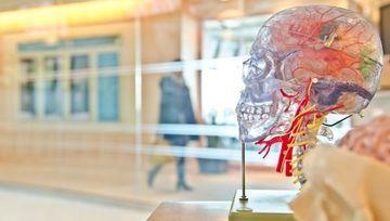 La CNMV presenta una guía sobre psicología para inversores
