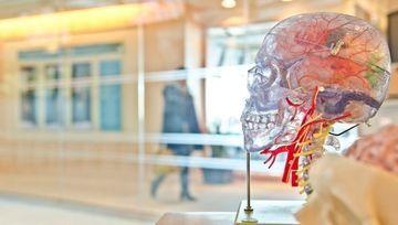 La inteligencia emocional, un recurso laboral al alza, también en el sector financiero