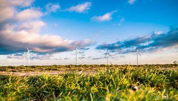 Ley de Cambio Climático y Transición Energética, la apuesta de España por la ISR